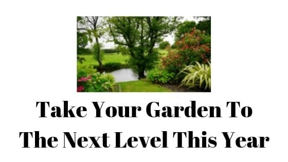 Take your garden to the next level this year