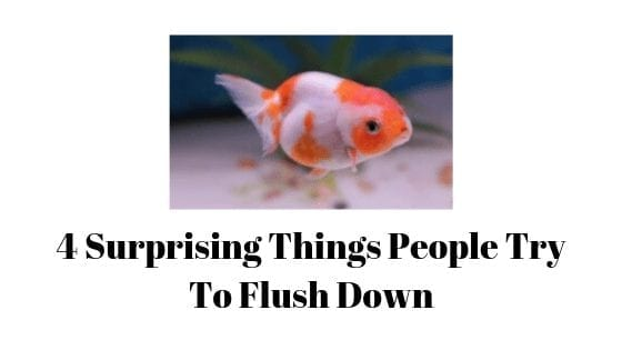 4 Surprising Things People Try To Flush Down