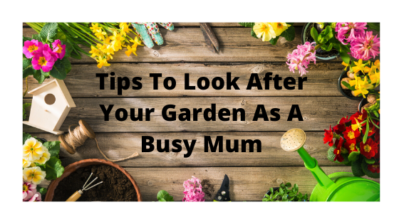 Tips To Look After Your Garden As A Busy Mum