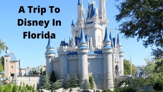 A Trip To Disney In Florida