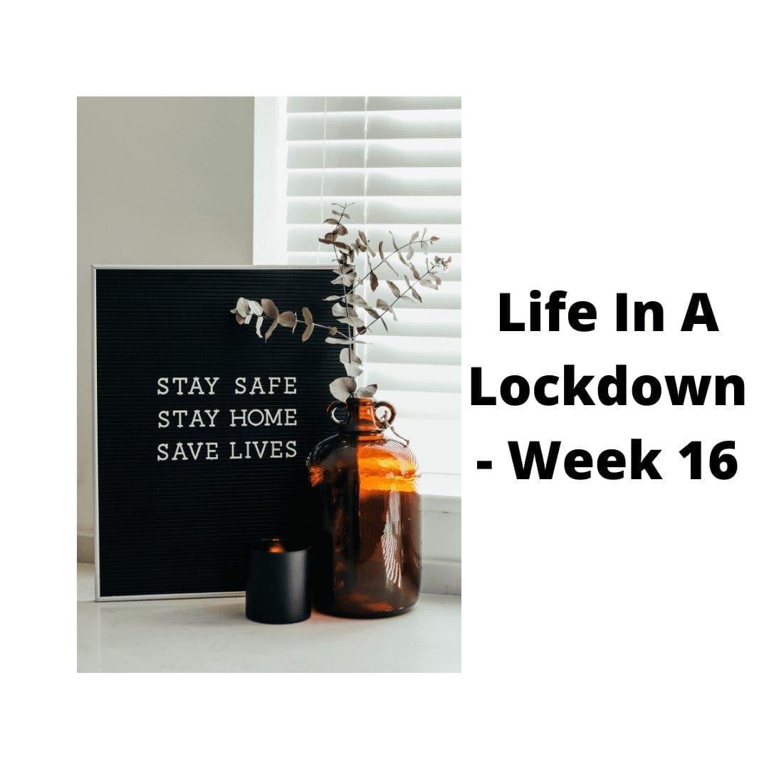 LIFE IN A LOCKDOWN LINKY – WEEK 16