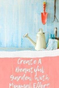 Create A Beautiful Garden, With Minimal Effort