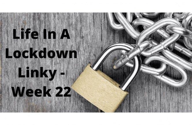 Life In A Lockdown Linky - Week 22