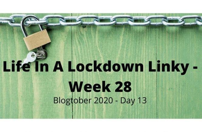 Life In A Lockdown Linky - Week 28