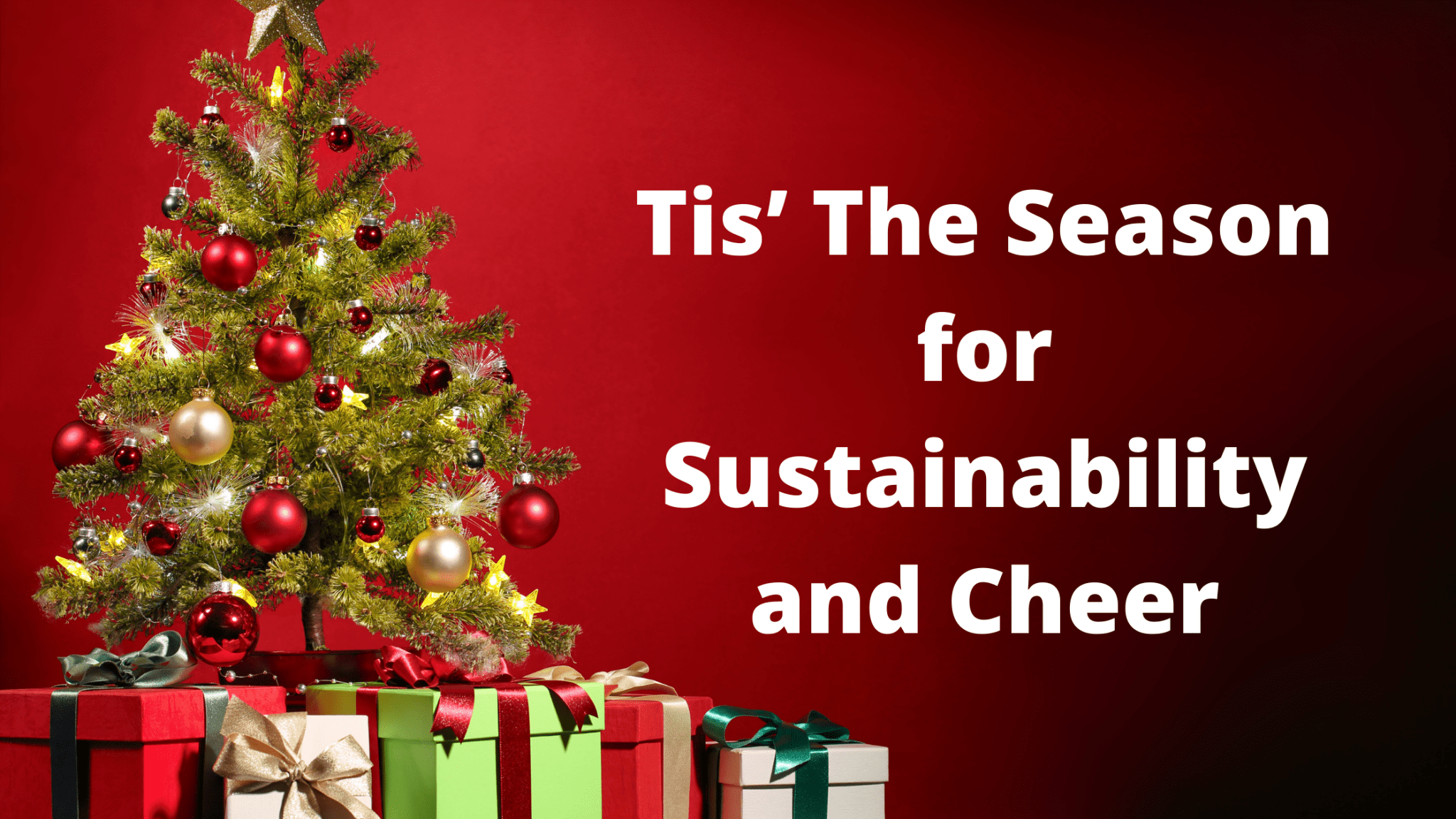 Tis' The Season for Sustainability and Cheer