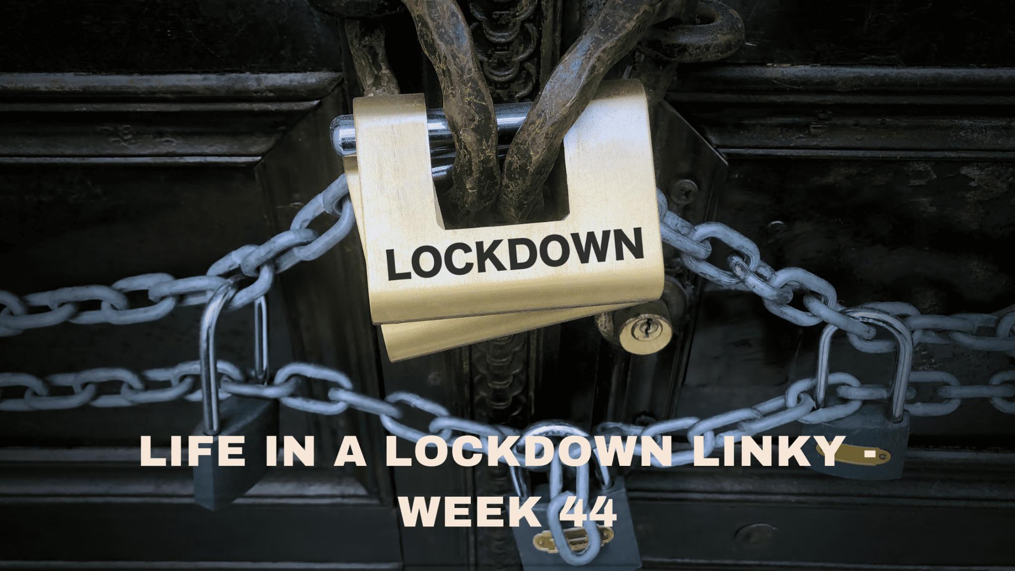 Life In A Lockdown Linky - Week 44