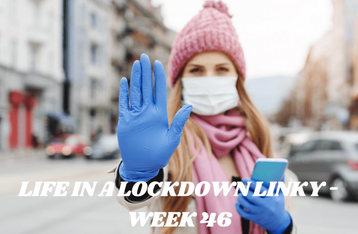 Life In A Lockdown Linky - Week 46
