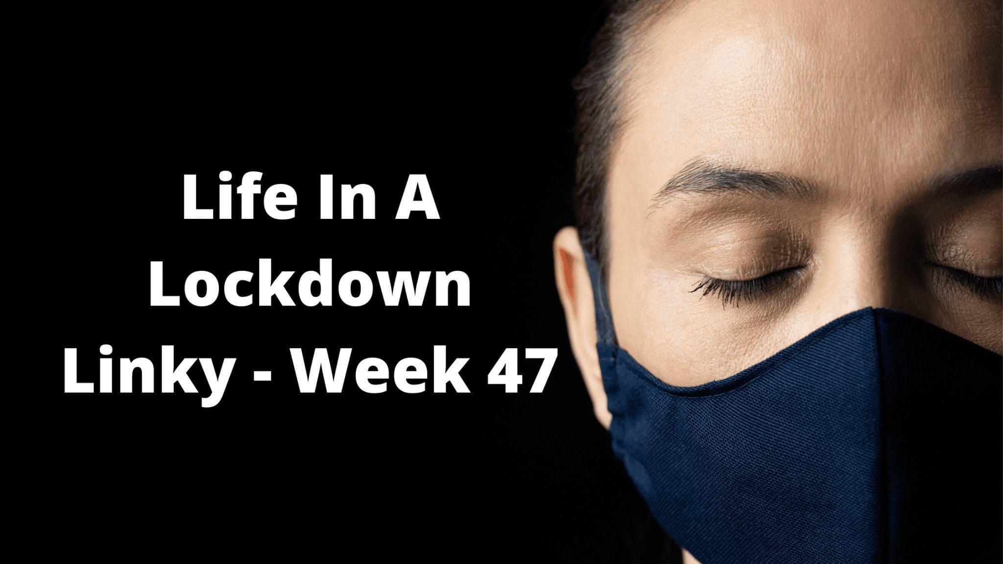 Life In A Lockdown Linky - Week 47